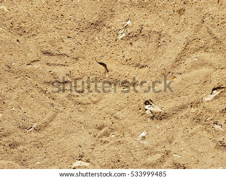 Sand texture used as background