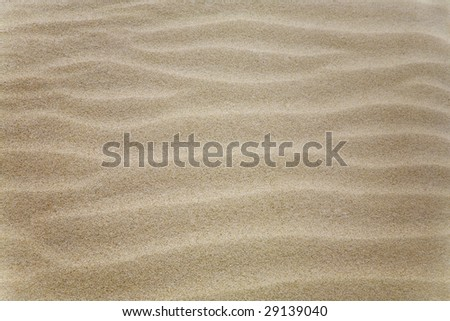 Sand texture with ripples on it