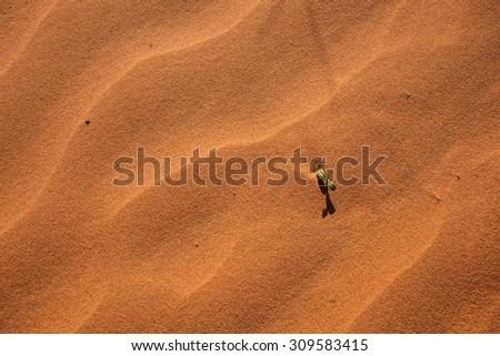 Sand textures, Sturts Stony Desert - stock photo