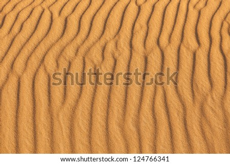 Sand waves of the beach at sunset