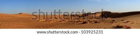 sanddunes in the sahara - stock photo