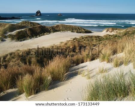 Sandfly bay near Dunedin, New Zealand - stock photo