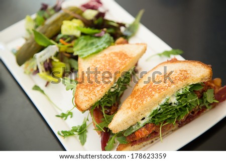 Sandwich and vegetable salad on a white plate - stock photo