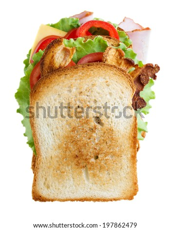 Sandwich isolated on white background - stock photo