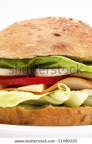 Sandwich on a plate and white background