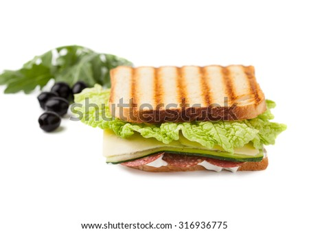sandwich on a white background