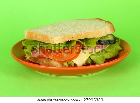 Sandwich on plate on green background