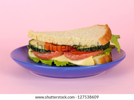 Sandwich on plate on pink background