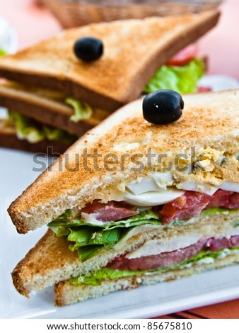 Sandwich with chicken, cheese and egg - stock photo