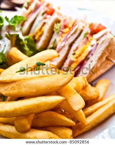 Sandwich with chicken, cheese and golden French fries potatoes
