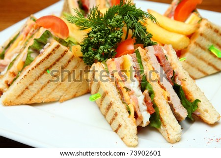 Sandwich with French Fries on a Plate - stock photo
