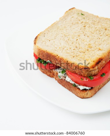 Sandwich with tomatoes and salty cheese