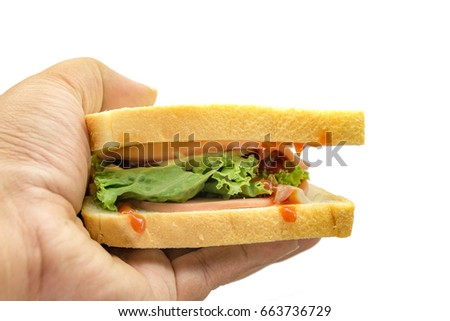 Sandwiches and vegetables salad in hand isolated on white background.