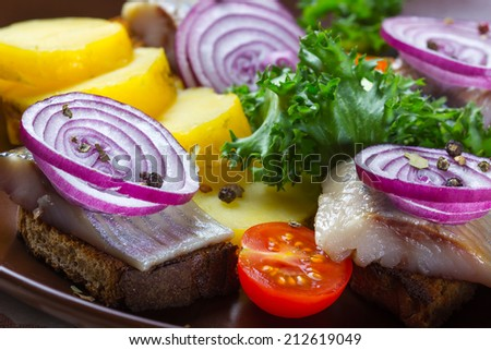 Sandwiches of rye bread with herring, red onions, herbs and potato slices - stock photo