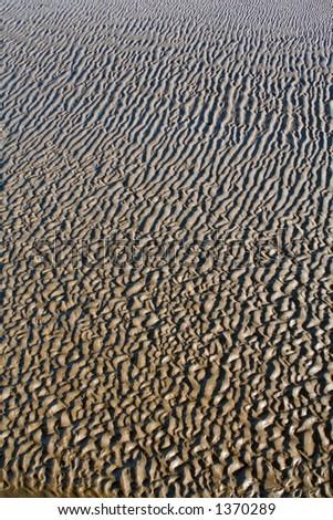 Sandy beach - stock photo