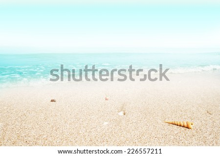 sandy beach and blue sea for background                                - stock photo