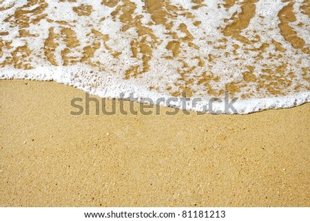 sandy beach and foamy surf - stock photo