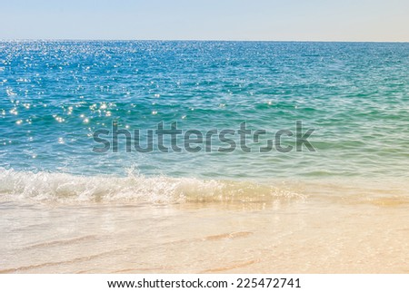 sandy beach and sea