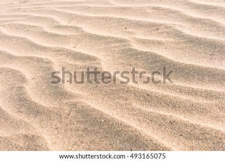 Sandy beach for texture background
