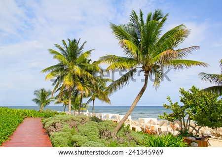 Sandy beach in Cancun, Mexico - stock photo