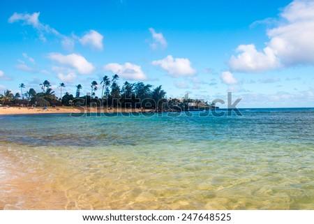 Sandy Beach in Tropical Paradise - stock photo