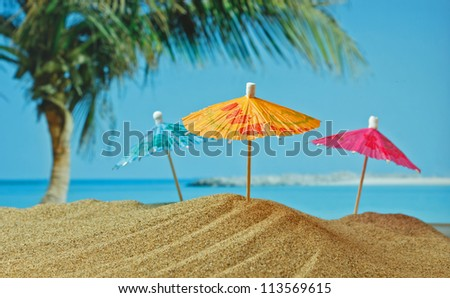 sandy beach on the tropical coast - stock photo