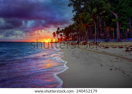 Sandy beach sunset with intense dark clouds and green foliage - stock photo