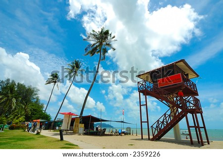 Sandy beach with blue sky, sea and coconut tree.