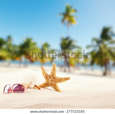 Sandy beach with seashells, blur azure water on background. Free space for text - stock photo