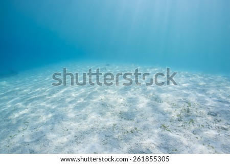 Sandy bottom, sun ray and fish in blue underwater - stock photo