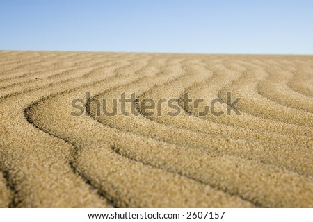 sandy curves - stock photo