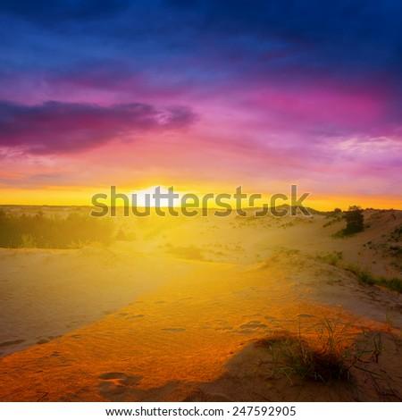 sandy desert at the sunrise - stock photo