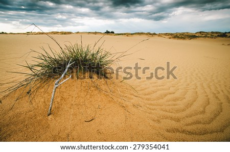Sandy desert landscape in one of the driest places on the planet - stock photo