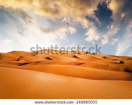 sandy desert on background at sunset - stock photo