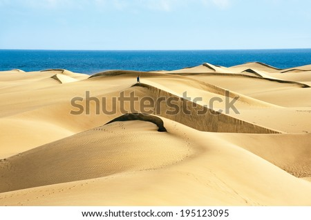 Sandy dunes in famous natural Maspalomas beach. Gran Canaria.  Spain - stock photo