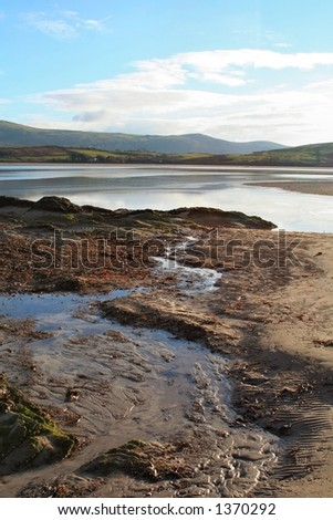 Sandy estuary - stock photo