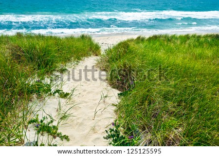 Sandy path to a beach and turquoise ocean.  The walkway goes through grassy sand dunes. - stock photo