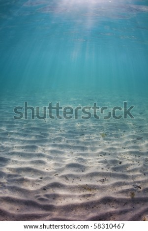 Sandy seabed in the Caribbean Sea - stock photo