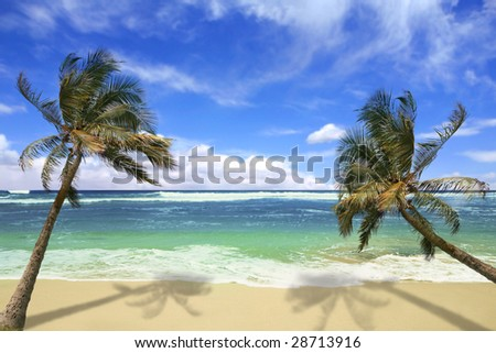 Sandy White Beach with Stunning Turquoise Waters and Palm Trees in Hawaii - stock photo