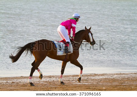 SANLUCAR DE BARRAMEDA, CADIZ, SPAIN - AUGUST 10: Unidentified rider at the start of race horses on Sanlucar de Barrameda beach on August 10, 2011 in Sanlucar de Barrameda, Cadiz, Spain. - stock photo