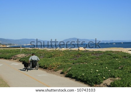 Santa Barbara, California beach front and Pacific Ocean, with a man and dog - stock photo
