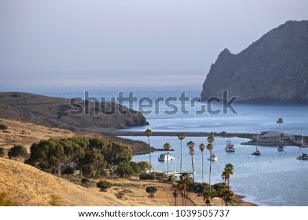 Santa Catalina , one of the Channel Islands off the coast of  Southern California.  The quiet end of the island.