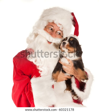 Santa claus bringing a 6 weeks old puppy dog