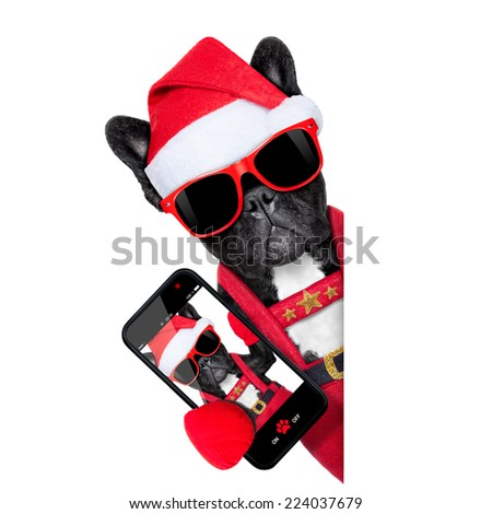 santa claus christmas dog wearing a hat taking a selfie,  isolated on white background - stock photo