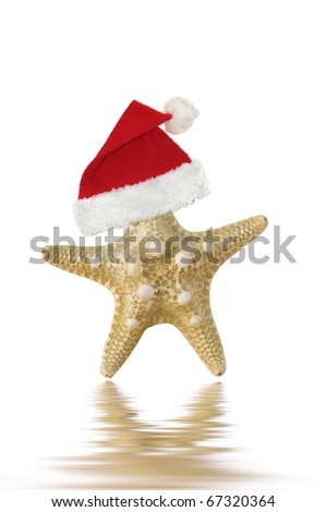 Santa Claus hat on starfish, isolated on white with water reflection. - stock photo