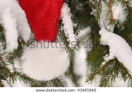 Santa Claus Hat outside on snowy tree