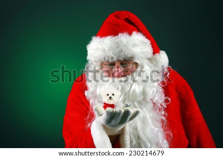 Santa Claus holds a tiny little purebred Bichon Frise dog in the palm of his hand while using his Christmas Magic to make it ready to deliver it to some good little boy or girl for Christmas. - stock photo
