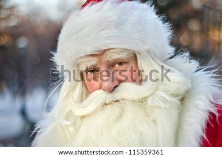 Santa Claus on a background of trees - stock photo