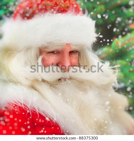 Santa Claus portrait smiling against christmas tree outdoor in snowfall - stock photo