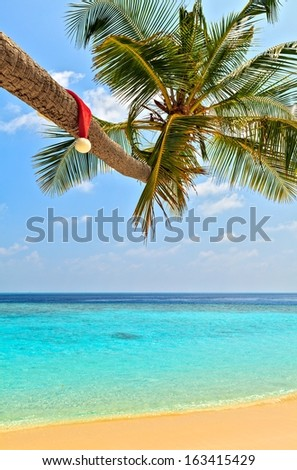 Santa hat is on a palm tree,  Maldives, The Indian Ocean - stock photo